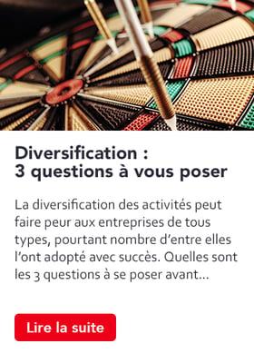 stim-article-diversification-3-questions
