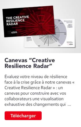stim-telechargement-canevas-creative-resilience-radar