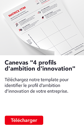 stim-telechargement-canevas-4-profils-ambition-innovation