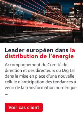 stim-usecase-leader-europeen-distribution-energie
